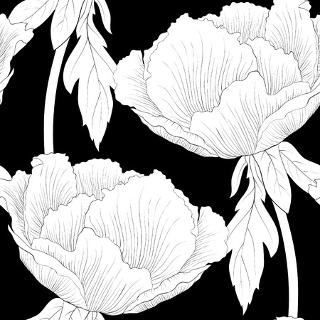 tree peony: Beautiful monochrome, black and white seamless background with flowers Plant Paeonia arborea (Tree peony) with stem and leaves. Hand-drawn contour lines and strokes. Illustration