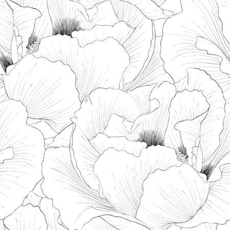 peony tree: Bella bianco e nero, sfondo bianco e nero senza soluzione di continuit� con i fiori delle piante Paeonia arborea (Albero peonia). Curve di livello e tratti disegnati a mano.