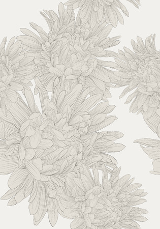 aster: Beautiful monochrome, black and white seamless background with flowers aster. Hand-drawn contour lines and strokes. Illustration