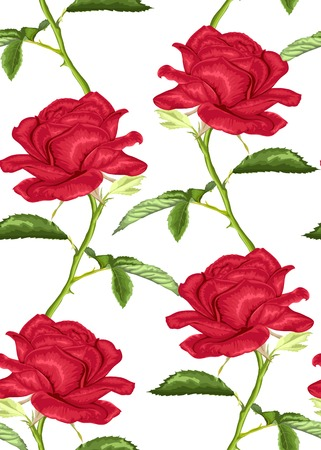 Beautiful seamless background with pink roses with stem and leaves on white background. Hand-drawn with effect of drawing in watercolor Vector