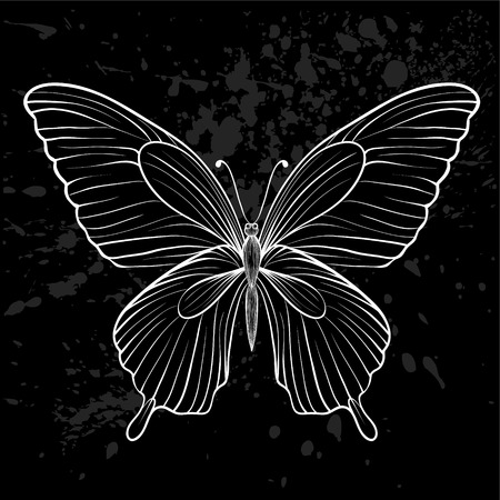 single line: graphic black and white butterfly.