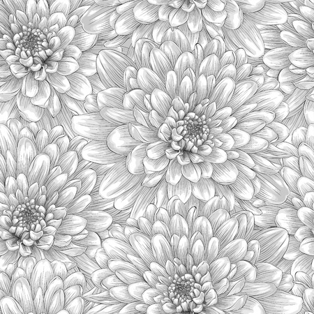 Beautiful monochrome, black and white seamless background with dahlia. Hand-drawn with effect of drawing in watercolor Vector