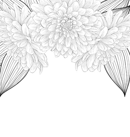 outline wedding: beautiful monochrome black and white background with frame of dahlia flowers. Hand-drawn contour lines and strokes. Illustration