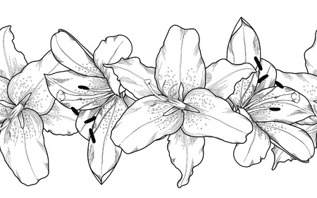 Beautiful monochrome, black and white seamless horizontal frame element of gray lily  flowers. Hand-drawn contour lines and strokes. Vector