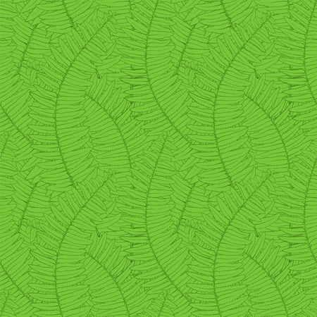 Beautiful seamless background with fern leaves Vector