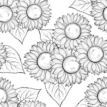 beautiful monochrome black and white seamless background with sunflowers. Hand-drawn contour lines and strokes. Perfect for background greeting cards and invitations Vector