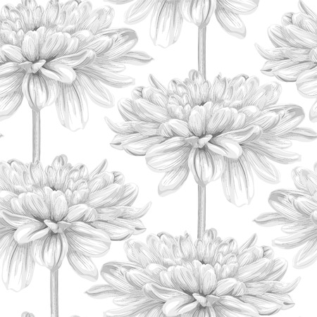 dahlia: Beautiful monochrome, black and white seamless background with dahlia. Hand-drawn with effect of drawing in watercolor