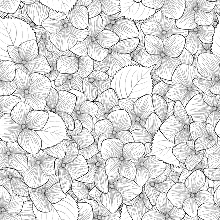 hydrangea flower: Beautiful seamless background with monochrome, black and white flowers. Hand-drawn contour lines and strokes. Perfect for background greeting cards and invitations to the day of the wedding, birthday Illustration