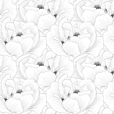 Beautiful monochrome, black and white seamless background with flowers Plant Paeonia arborea (Tree peony). Hand-drawn contour lines and strokes.