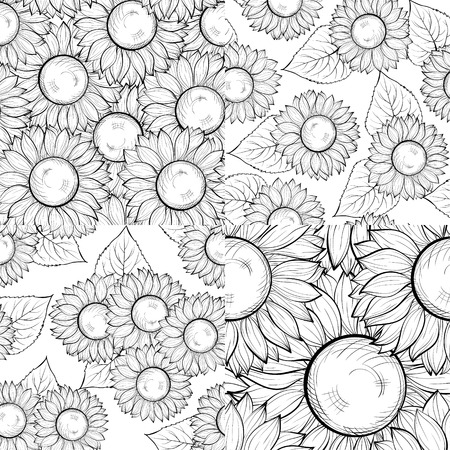 set of beautiful black and white seamless background with sunflowers. Hand-drawn contour lines and strokes. Perfect for background greeting cards and invitations Vector