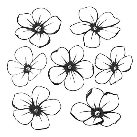 Hermosa monocromático negro y blanco colección floral con hojas y flores. para tarjetas de felicitación e invitaciones de la boda, cumpleaños, Día de San Valentín, día de la madre y otras fiestas estacionales Foto de archivo - 43266868