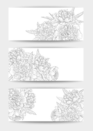 white wedding: Beautiful black and white Set of horizontal banners with flowers. Hand-drawn background for greeting card and invitations of wedding, birthday, Valentines Day, mothers day and other seasonal holiday