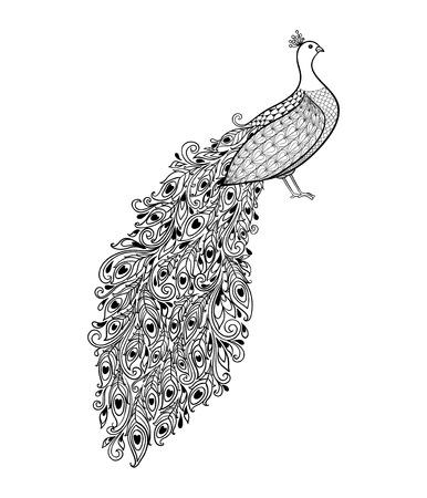 bordados: hermoso monocromático negro y del pavo real decorativo blanco. Mano vector dibujado aislado en el fondo blanco. época boceto para el diseño de tatuaje o mehandi.