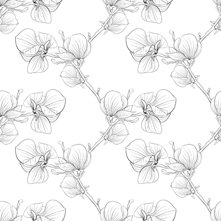 magnolia tree: Beautiful monochrome, black and white seamless background with blooming magnolia tree branches. for design for greeting card and invitation of the wedding, birthday, Valentines Day, mothers day and other seasonal holiday Illustration
