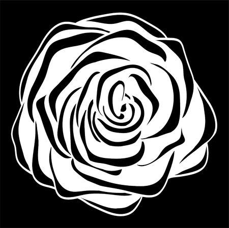 guipure: beautiful monochrome black and white rose isolated. Floral design for greeting card and invitation of wedding, birthday, Valentines Day, mothers day and seasonal holiday Illustration