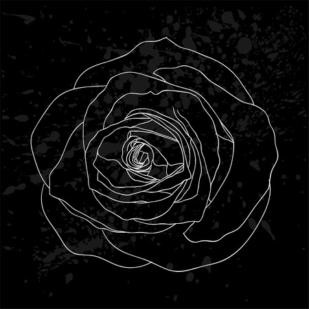 rosebud: beautiful black and white rose outline with gray spots on a black background. design for greeting card and invitation of the wedding, birthday, Valentines Day, mothers day and other seasonal holiday