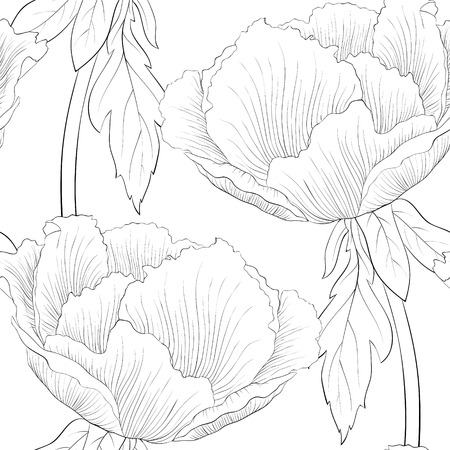 white roses: beautiful black and white seamless pattern flowers. background for design for greeting card and invitation of the wedding, birthday, Valentines Day, mothers day and other seasonal holiday Illustration