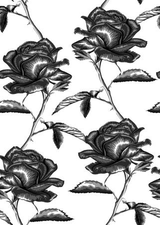 de fondo sin fisuras en blanco y negro hermoso. rosas, tallo, hojas. diseño de tarjetas de felicitación y la invitación de la boda, cumpleaños, San Valentín, día de la madre y otra temporada de vacaciones