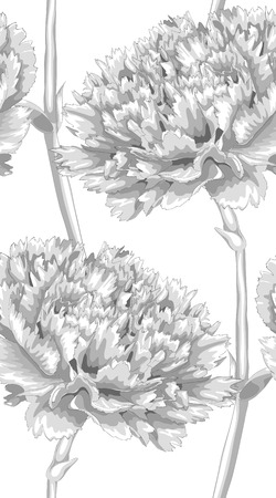 ho: Beautiful monochrome, black and white seamless background with carnation. Hand-drawn with effect of drawing in watercolor. background for design for greeting card and invitation of the wedding, birthday, Valentines Day, mothers day and other seasonal ho