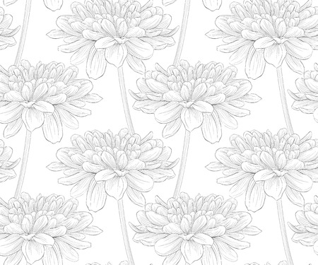 feminine background: black and white seamless pattern in dahlia. background for design for greeting card and invitation of the wedding, birthday, Valentines Day, mothers day and other seasonal holiday Illustration