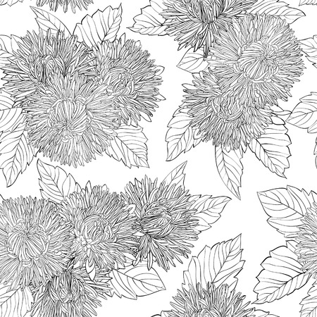 aster flower: Beautiful monochrome, black and white seamless background with flowers aster. design for greeting card and invitation of the wedding, birthday, Valentines Day, mothers day and other seasonal holiday