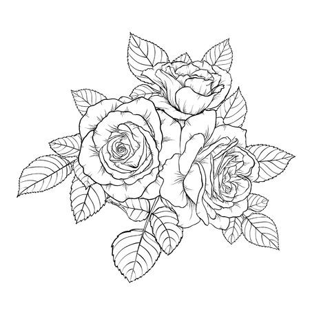 rosa negra: hermoso monocromático negro y blanco ramo de rosa aislada en el fondo. Dibujado a mano. diseño de tarjetas de felicitación y la invitación de la boda, cumpleaños, San Valentín, el día de la madre y el otro día de fiesta