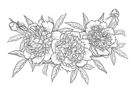 mooie zwart-wit zwart en wit boeket pioen geïsoleerd op de achtergrond. Hand getekend. ontwerp wenskaart en uitnodiging van de bruiloft, verjaardag, Valentijnsdag, moederdag en andere vakantie
