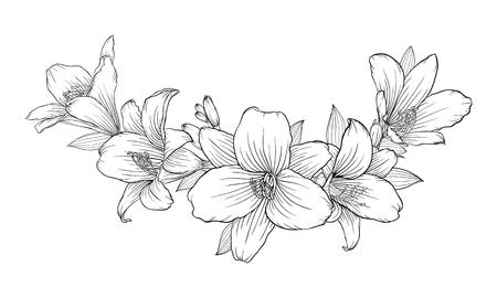 Hermoso monocromático negro y blanco ramo de lirio aislados en el fondo. Dibujado a mano. diseño de tarjetas de felicitación y la invitación de la boda, cumpleaños, San Valentín, el día de la madre y el otro día de fiesta Foto de archivo - 64992869