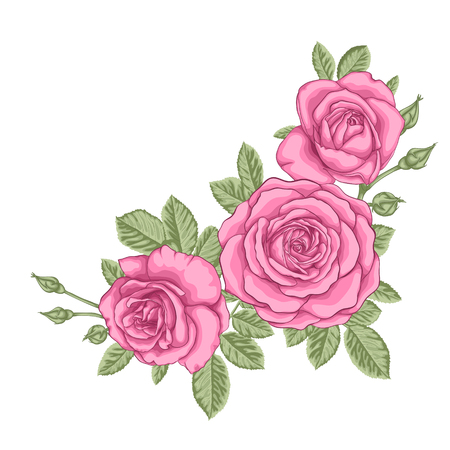 arrangements: beautiful bouquet with three pink roses and leaves. Floral arrangement. design greeting card and invitation of the wedding, birthday, Valentines Day, mothers day and other holiday. Illustration