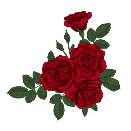 floral arrangement: beautiful bouquet with red roses and leaves. Floral arrangement. design greeting card and invitation of the wedding, birthday, Valentines Day, mothers day and other holiday