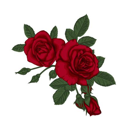 Bello bouquet con rose rosse e foglie. Disposizione floreale. Disegno biglietto di auguri e invito del matrimonio, compleanno, San Valentino, giorno della madre e altre vacanze Archivio Fotografico - 71187286