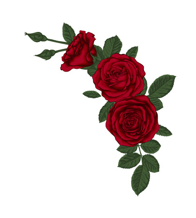floral arrangement: beautiful bouquet with red roses and leaves. Floral arrangement. Illustration