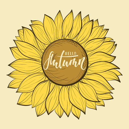 Beautiful vintage sunflower flower. Hello autumn. Hand drawn calligraphy and brush pen lettering. design for holiday greeting card and invitation of seasonal autumn holiday.