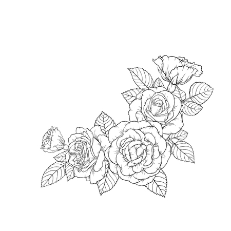 Beautiful black and white bouquet rose and leaves. Floral arrangement isolated on background. Design greeting card and invitation of the wedding, birthday, Valentines day, mothers day, holiday. Ilustração