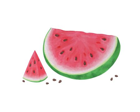 Slice of watermelon on white background, summer fruit, Vector illustration. design for greeting card and invitation of seasonal summer holiday,