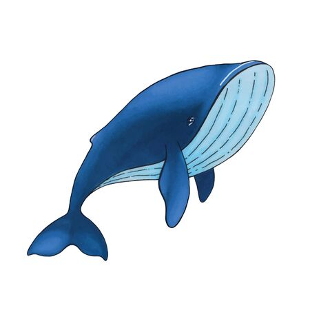 Vector cute cartoon blue whale isolated on white background.