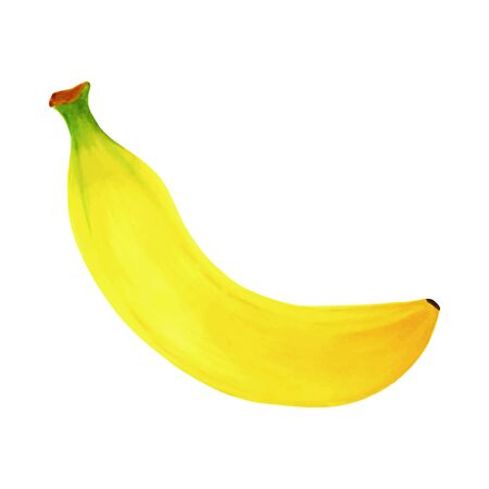 Hand drawn markers painting fruit banana on white background. design for holiday greeting card and invitation of seasonal summer holidays, summer beach parties, tourism and travel. Foto de archivo - 134085515
