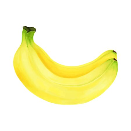Hand drawn markers painting fruit banana on white background. design for holiday greeting card and invitation of seasonal summer holidays, summer beach parties, tourism and travel. Foto de archivo - 134085522