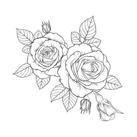 beau bouquet noir et blanc rose et feuilles. Composition florale isolée sur fond.