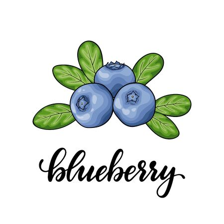 Beautiful cartoon red blueberry with lettering word blueberry, symbol of summer. design for holiday greeting card and invitation of seasonal summer holidays, beach parties, tourism and travel.
