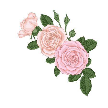 beautiful bouquet with vintage pink roses buds and leaves. Floral arrangement. design greeting card and invitation of the wedding, birthday, Valentine's Day, mother's day and other holiday.