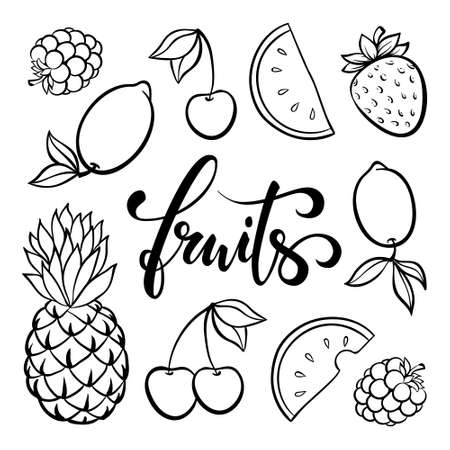 vector fruit symbols, doodle outline drawing of tropical fruits berries, simple single line drawing. Fruits Hand drawn brush pen lettering. design for holiday greeting card and invitation