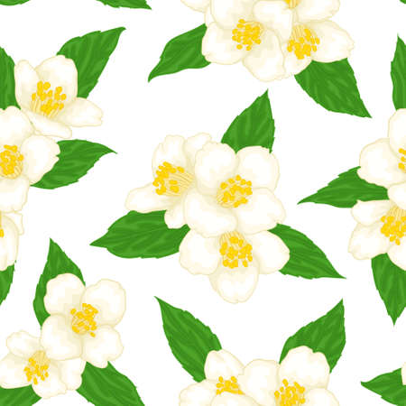 seamless pattern branch flower jasmine with green leaves cartoon watercolor style isolated on white background. Hand-draw branch flowers. Design greeting card and invitation. Vector illustration.