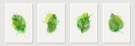 Botanical wall art vector set. Tropical Foliage line art drawing with abstract shape. Abstract Plant Art design for print, cover, wallpaper, Minimal and natural wall art decoration, poster, brochure.