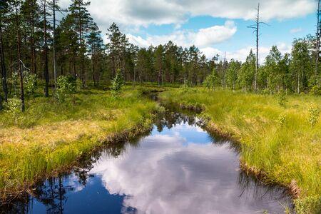Beautiful creek in the wilderness of Sweden, Dalarna region nearby Fredriksberg