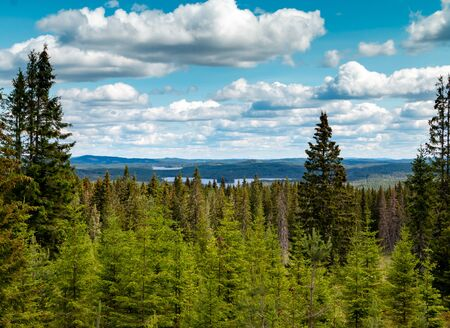Swedish landscape with pine trees, hills and a lake, picture tasks in Dalarna region, nearby Fredriksberg