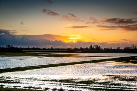 Flooded plain near the river IJssel and submerged land, flooded under water, province Overijssel the Netherlands. Tasks in the evening time Banco de Imagens