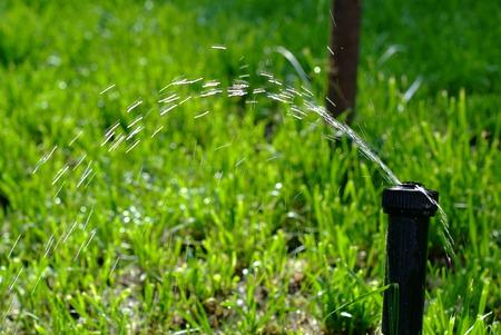 water sprinkler: Lawn Water Sprinkler