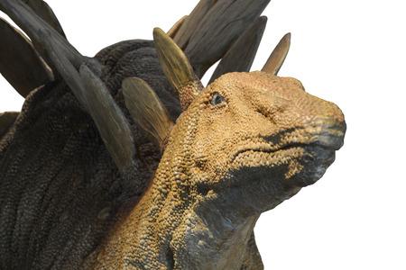 stegosaurus: Dinosaurio Stegosaurus Editorial