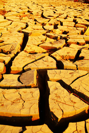 cropland: dry river bed with carck soil